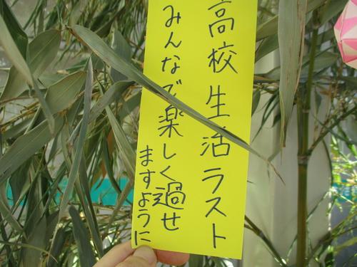 IMG_2013.JPG