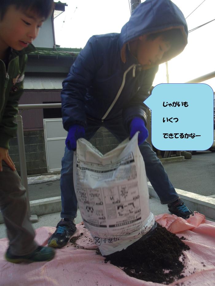 20このはジャガイモの収穫①.jpg